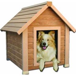 NewAgePet Eco-Concepts Bunkhouse Pet House