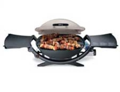 Weber Q100 Grill 386002 Weber Q 100 Prices And Reivews