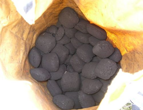 Comparing The Different Types of Charcoal