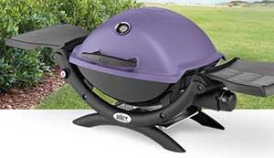 Q1200 in Purple